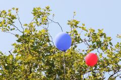 Luftballons vor der Allee