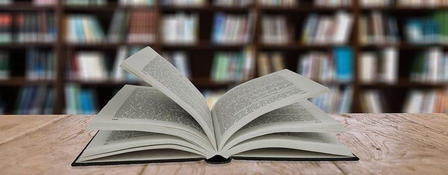 Buch vor Bücherreihe